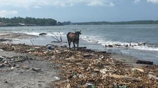 A teenage perspective on ocean trash in El Salvador